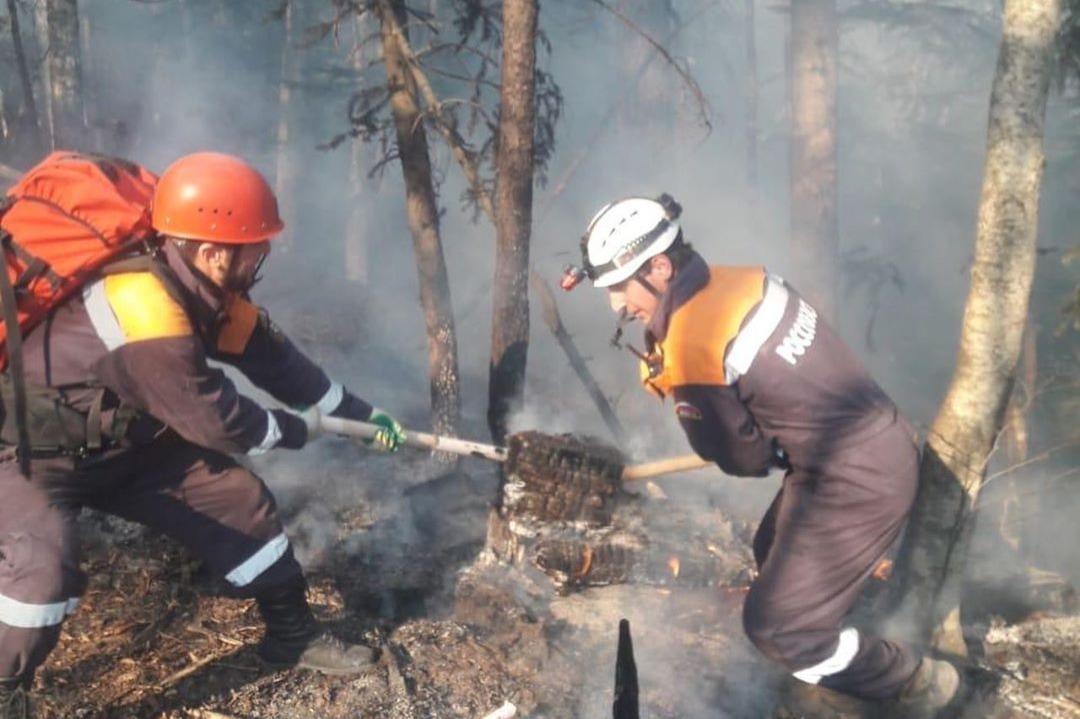 Лесной пожар около «Архыза» локализован